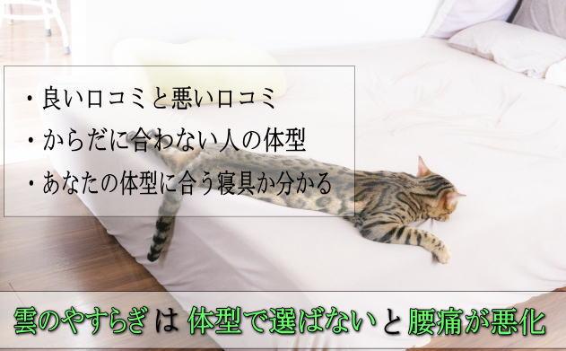 雲のやすらぎプレミアム口コミ評判